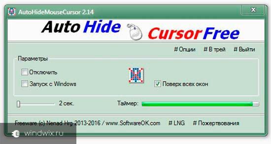 Auto Hide Cursor